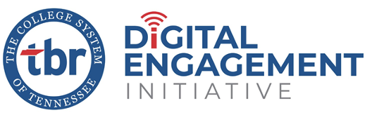 Digital Engagement Initiative (DEI)