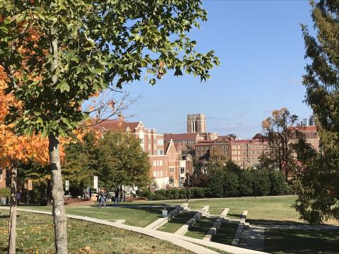 UT announces partnership with Tennessee College of Applied Technology Knoxville & Knoxville College